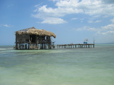 pelicanbar